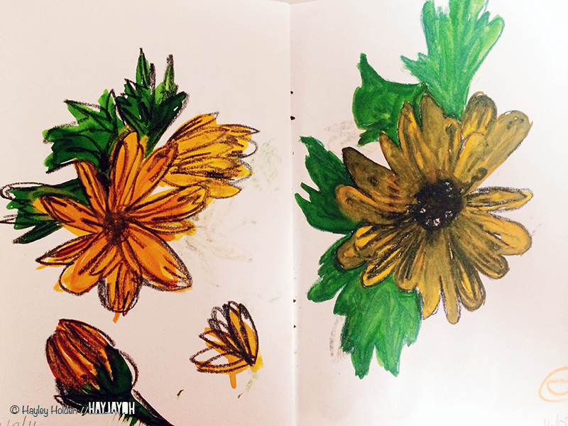 Hayley_Holden_sketchbook_HAYJAYOH